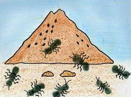 Free Ant Colony Cliparts, Download Free Clip Art, Free Clip.