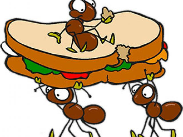 Ant Cliparts Free Download Clip Art.