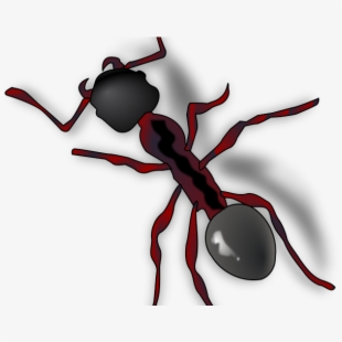 Ant Clipart Ant Trail.