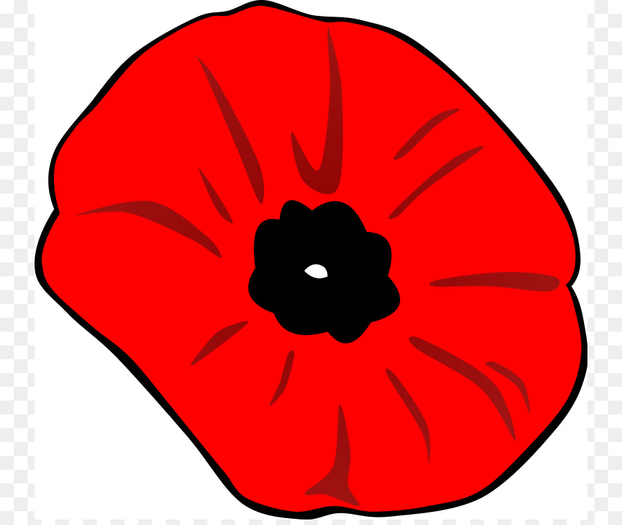 Anzac Day Poppy png download.