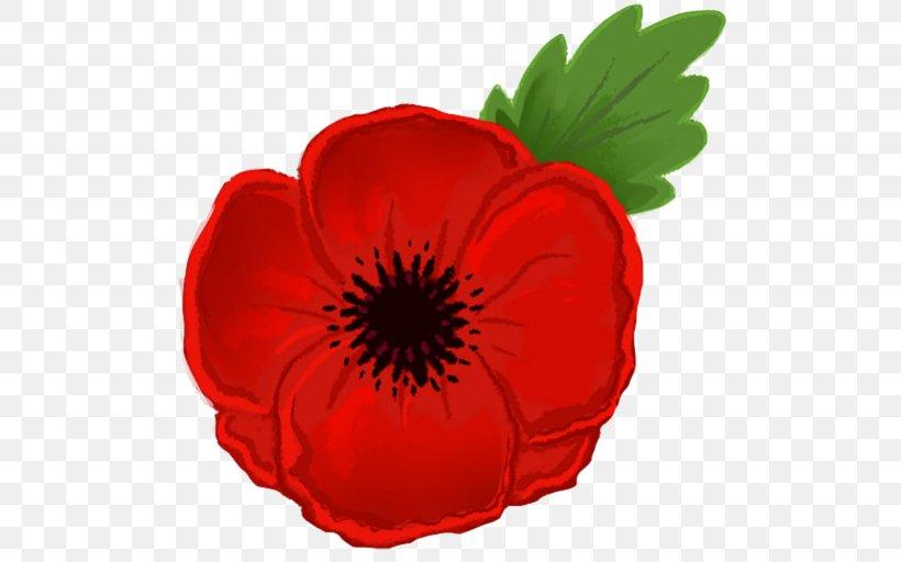Remembrance Poppy Armistice Day Clip Art, PNG, 512x512px.