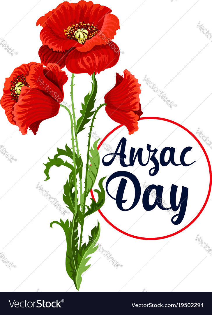Anzac day 25 april poppy bunch icon.