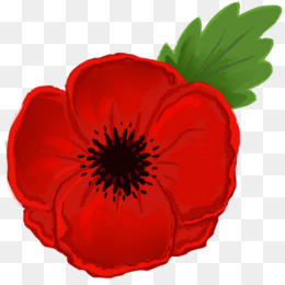 Anzac Day PNG and Anzac Day Transparent Clipart Free Download..