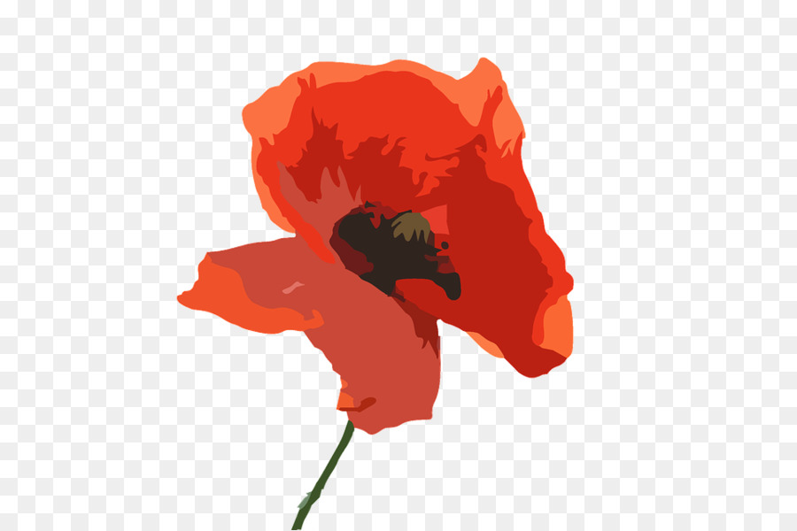 Anzac Day Poppy clipart.