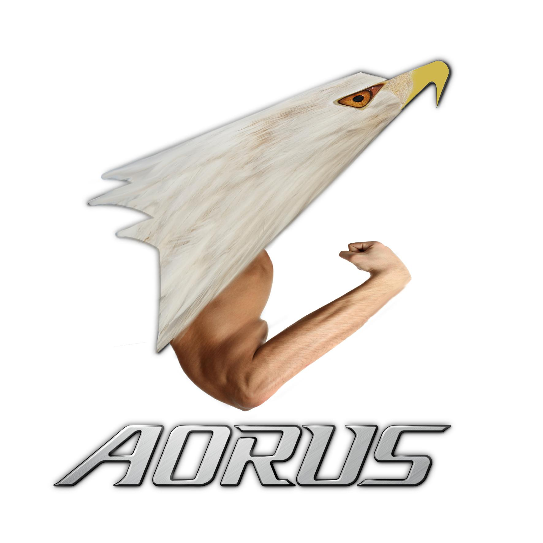 Is this what the AORUS logo supposed to look like IRL? Sorry.