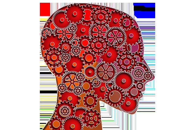 Is AP Psychology Hard? 5 Key Factors Discussed.