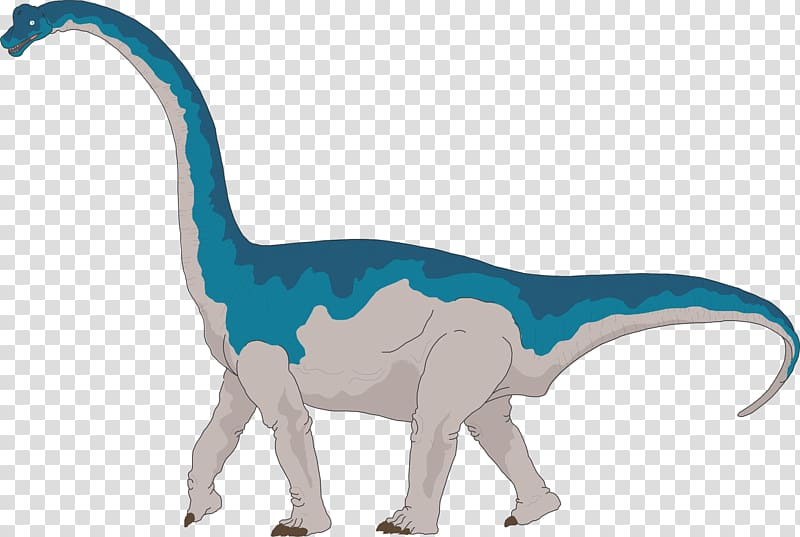 Brachiosaurus Apatosaurus Brontosaurus Dinosaur size.
