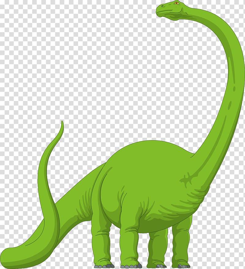 Brachiosaurus Diplodocus Apatosaurus Brontosaurus , dinosaur.