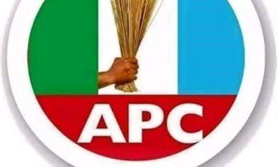 APC in S/Africa promises to partner President Buhari to.