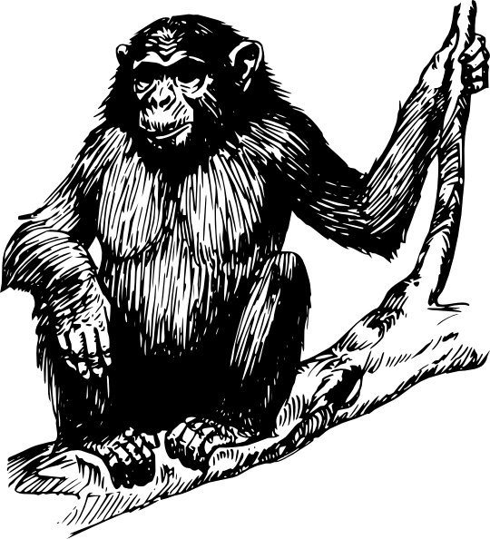 Clip Art Black And White Cartoon Ape Clipart.