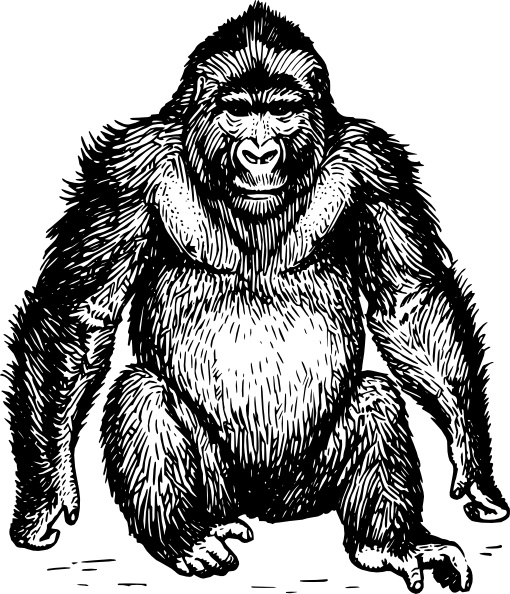 Ape clip art Free vector in Open office drawing svg ( .svg.