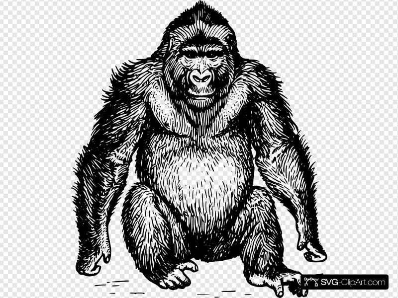 Ape Clip art, Icon and SVG.