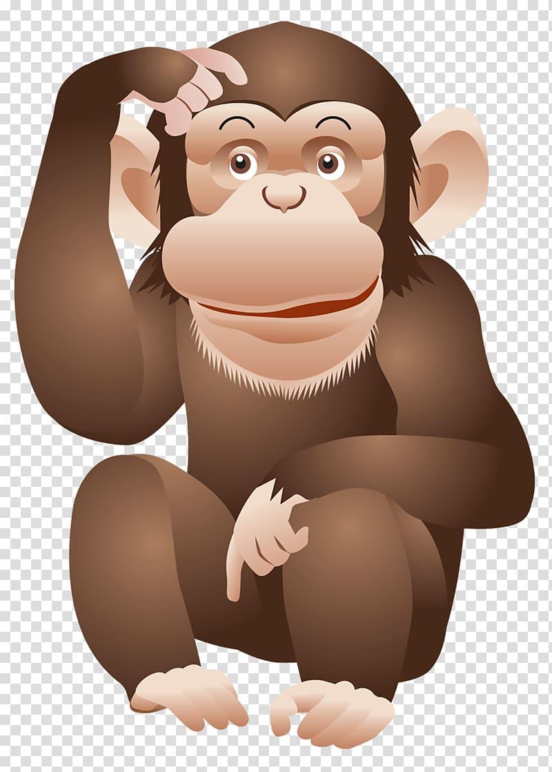 Ape Chimpanzee Monkey, Monkey transparent background PNG.