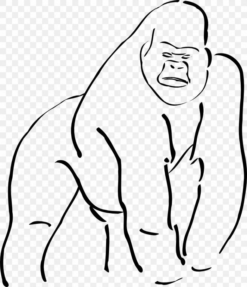 Mountain Gorilla Ape Drawing Clip Art, PNG, 859x1000px.