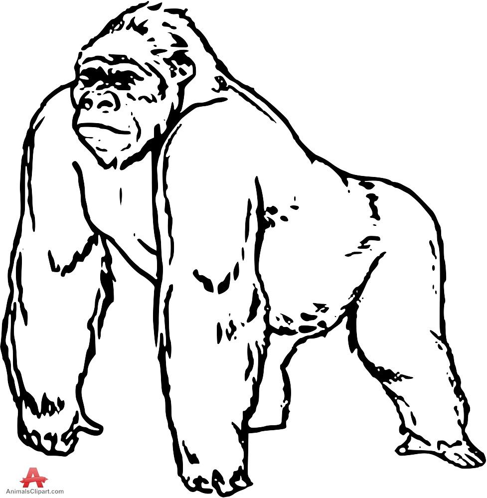 1152 Gorilla free clipart.