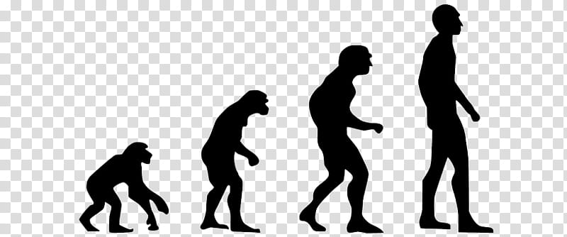Human Evolution Silhouette, Neanderthal, Insitome Inc.
