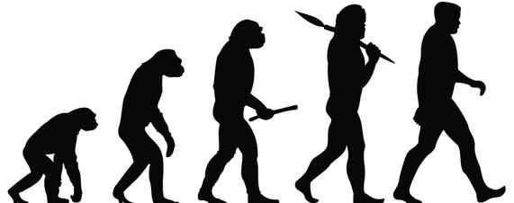 456 Evolution free clipart.