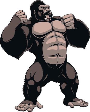 Ape Clipart at GetDrawings.com.