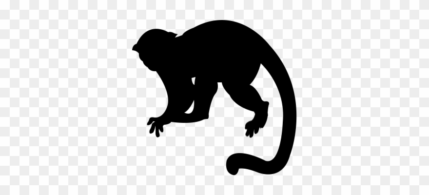 Monkey Silhouette Png.