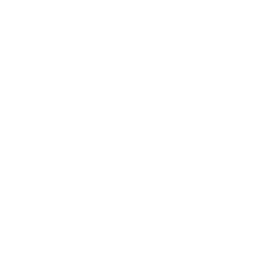 White aperture icon.