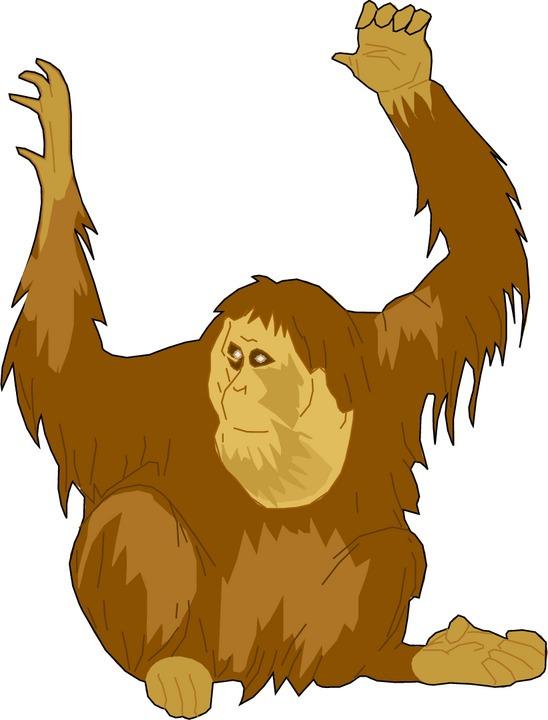 Free Ape Clipart.