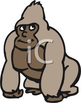 Picture of a Gorilla Standing On a White Background In a Vector.