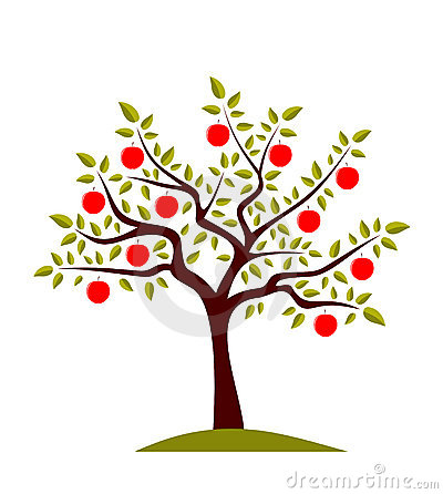 Apple Tree Stock Images.