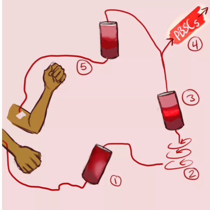 Apheresis nurse clipart clipart images gallery for free.