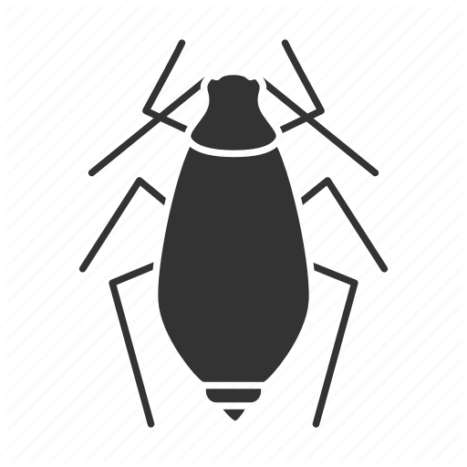 'Insects. Glyph. Silhouettes' by bsd studio.