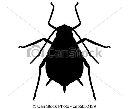 Aphids Illustrations and Stock Art. 140 Aphids illustration and.
