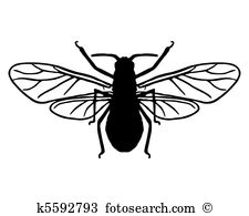 Aphid Clipart Vector Graphics. 90 aphid EPS clip art vector and.
