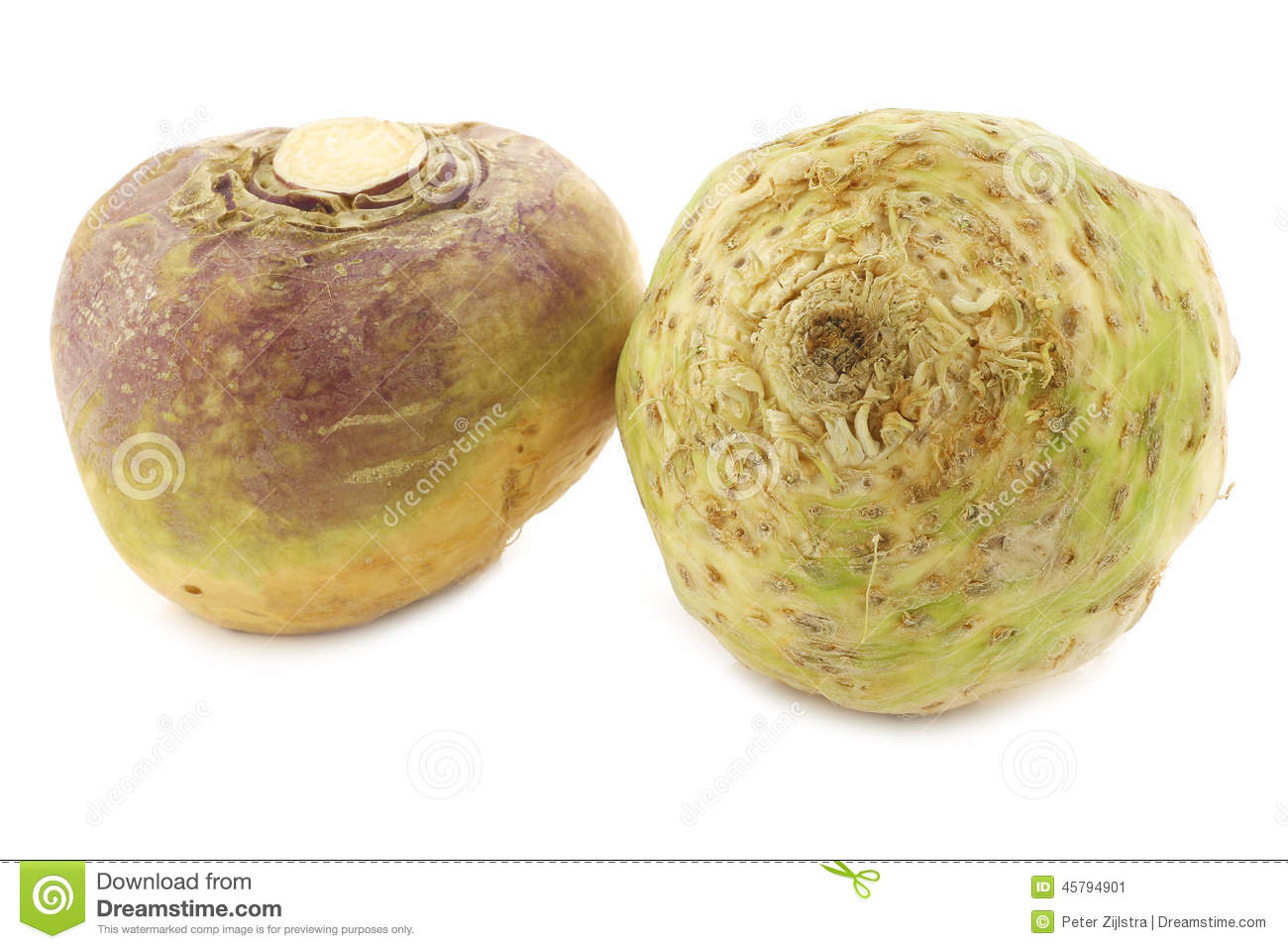 Fresh Turnip (Brassica Rapa Rapa) And A Celery Root(Apium.