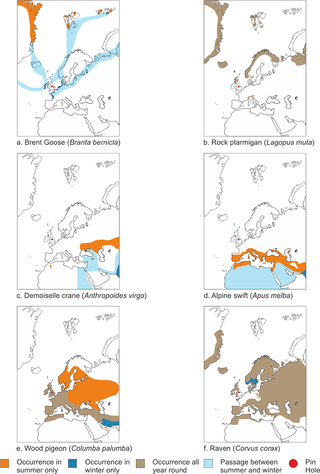 PLOS ONE: The Long Term Response of Birds to Climate Change: New.