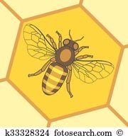 Apoidea Clipart Illustrations. 8 apoidea clip art vector EPS.