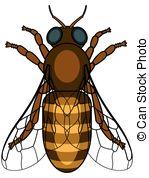 Apoidea Vector Clipart EPS Images. 8 Apoidea clip art vector.
