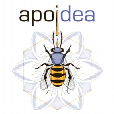 apoidea apiary (@apoidea_apiary).