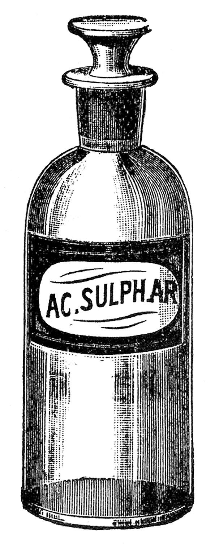 Apothecary clipart.