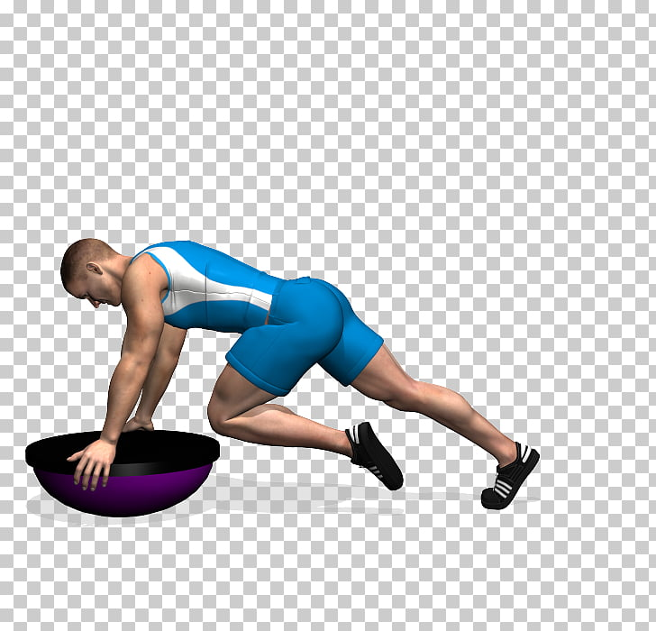 Gluteal muscles Exercise Squat BOSU High.