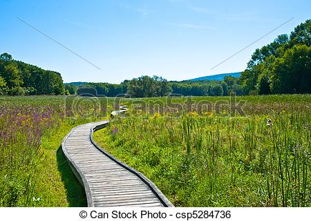 Stock Image of Appalachian Trail.