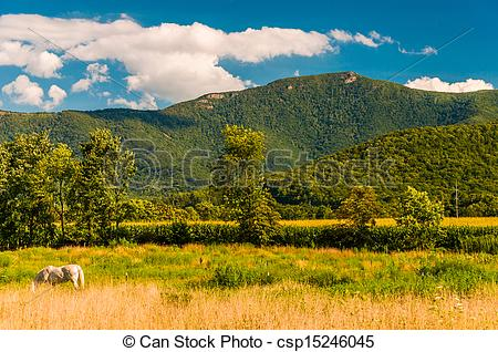 Stock Photo of Farm fields and view of the Appalachians in the.