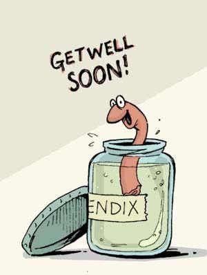 Appendix Clip Art.