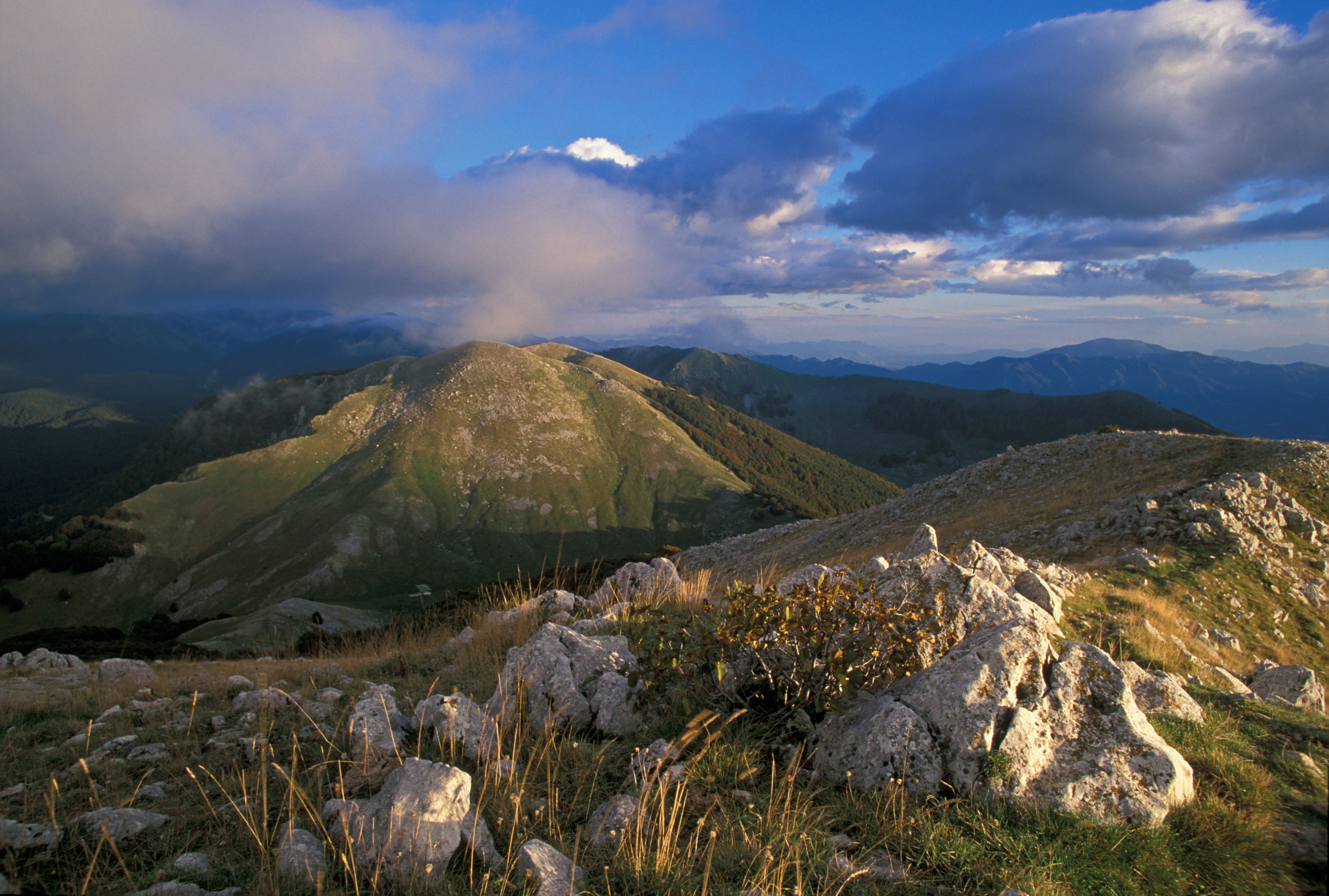 Central Apennines — Rewilding Europe.