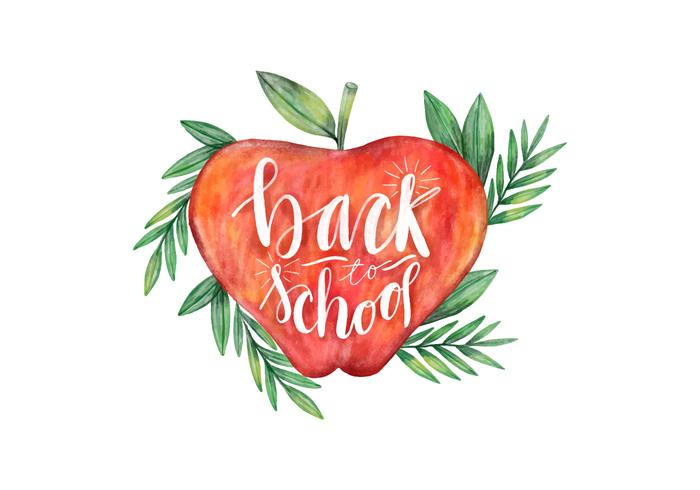 Back To School Watercolor Apple With Leaves Vector.