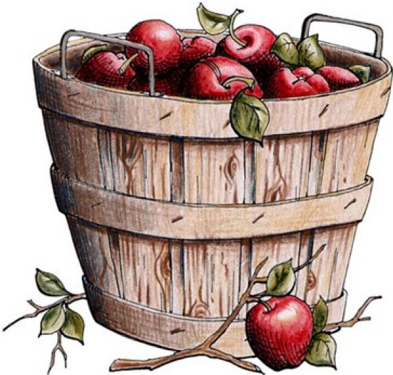 Clipart apple basket.