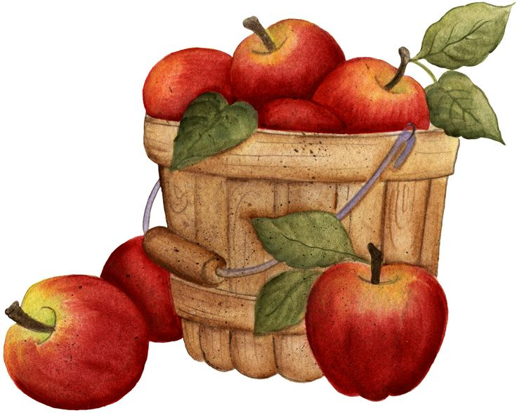 Apple basket clip art.