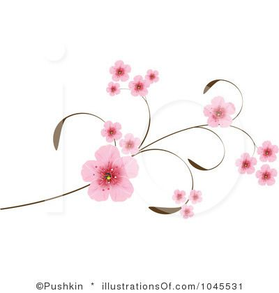 1000+ images about Cherry Blossom / Sakura on Pinterest.