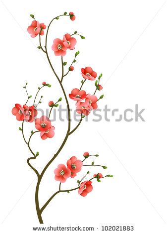 Cherry Blossom Pattern Stock Photos, Royalty.