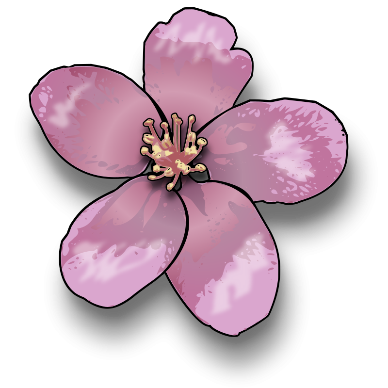 Free Clipart: Apple blossom.