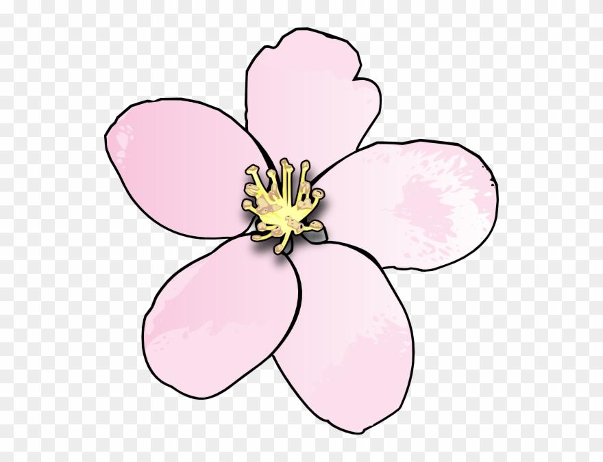 Pink Apple Blossom Clip Art.