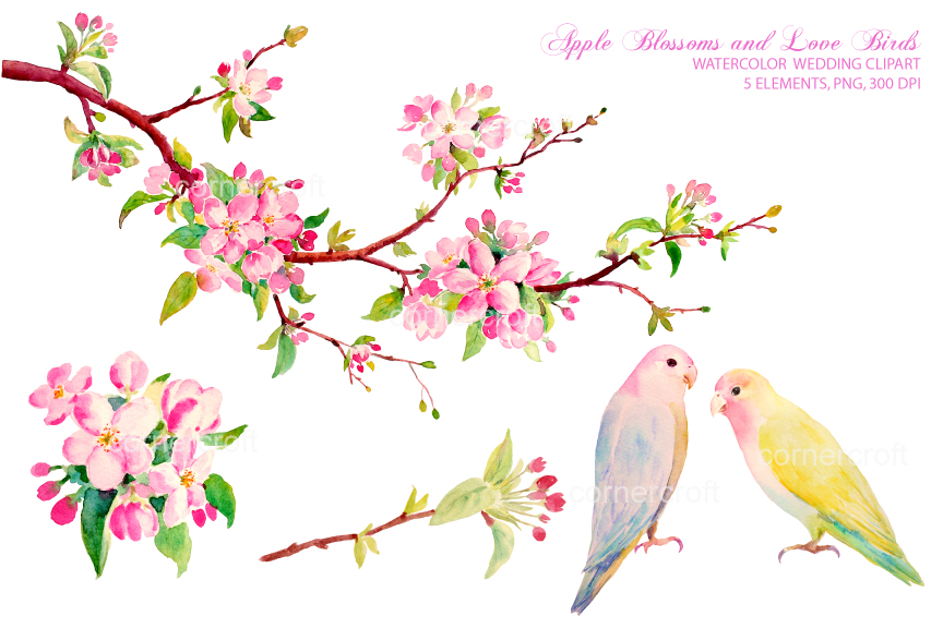 Apple Blossoms Clipart Clipground